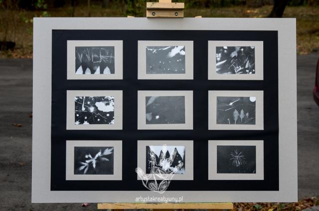 artystakreatywny.pl, warsztaty, fotogram, fotografia tradycyjna, tradycyjne techniki fotograficzne,